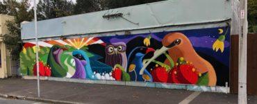 wainuiomata, artist, art, grafitti, homedale, mural