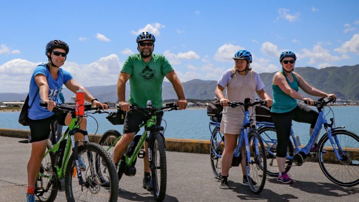 Green Jersey cycle tour on Petone Wharf