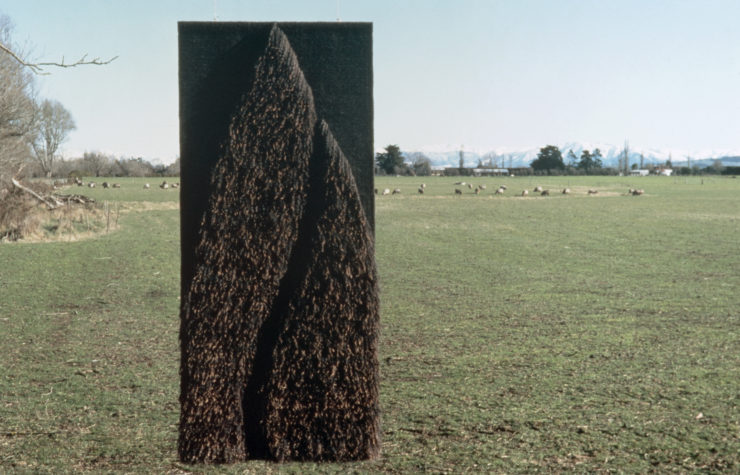 Judy Wilson, Brown Fleece VI, 1982