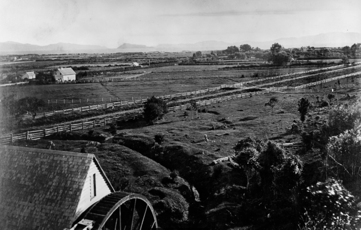 Percy Scenic Reserve historic