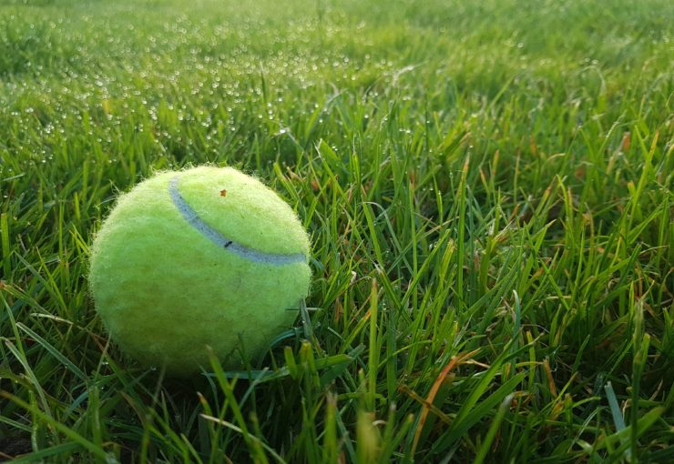 A tennis ball on a lawn