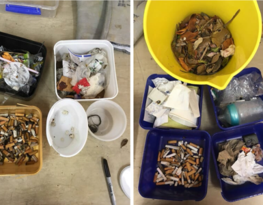 Litter found during trial