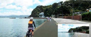 Simulated view of proposed 3.5m wide shared path with double curved wall in Lowry Bay