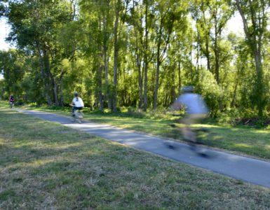 Cycling along the Hutt River