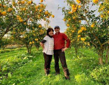 Neville Chun exotic fruit tree naenae