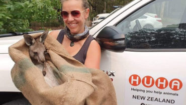 Vicki holding a kangaroo in front of a ute