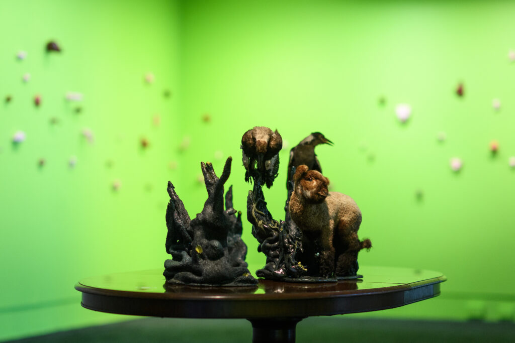 Taxidermy animals arranged on a table in a lime green room